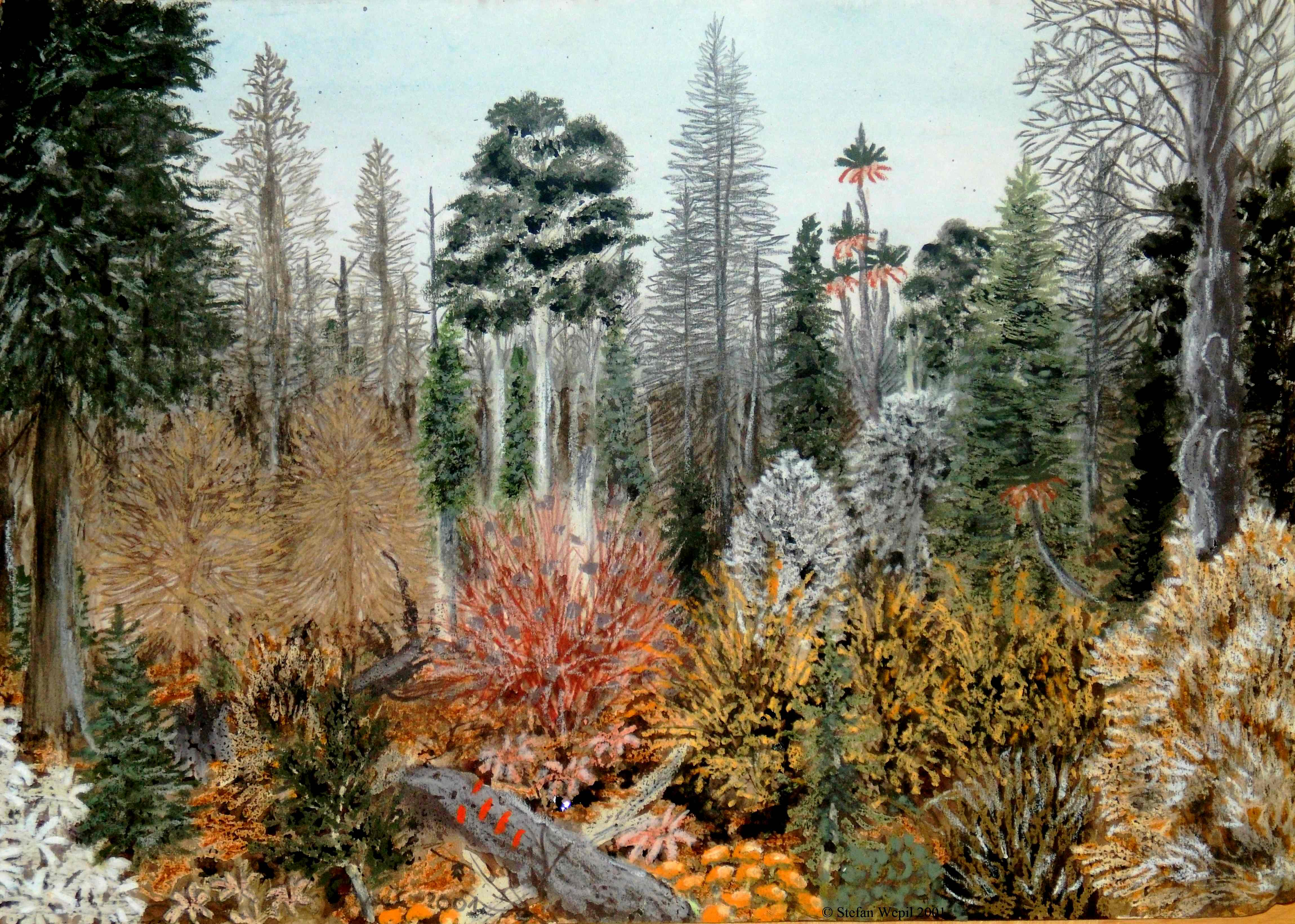 Landschaftsbild Pantanor (C) Stefan Wepil