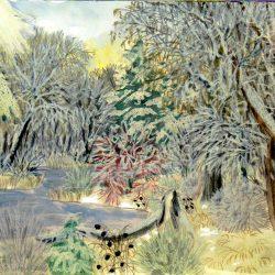 Ophus Landschaftsbild (C) Stefan Wepil