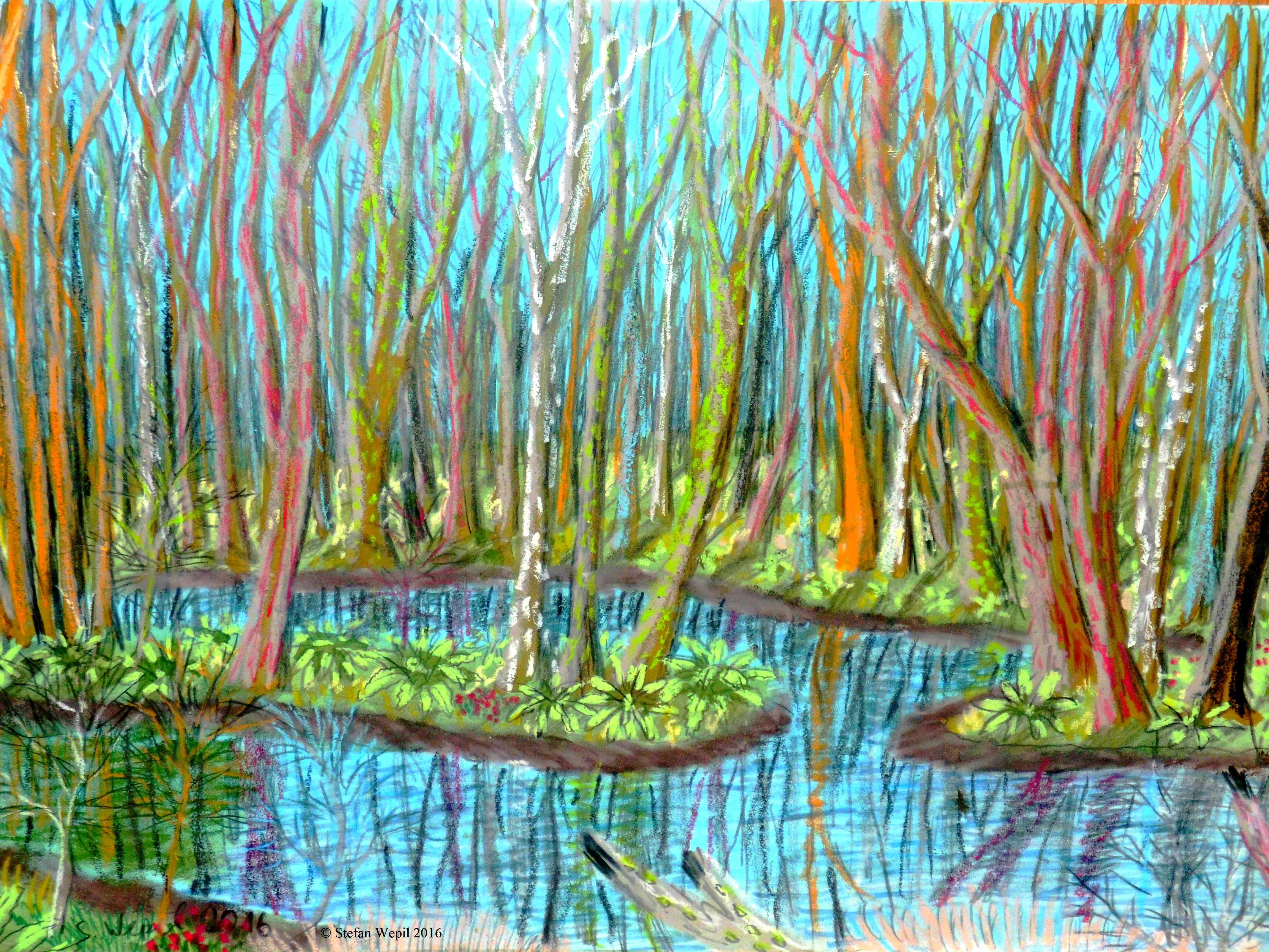 Die Feuchtwälder von Gor auf dem Planeten Gon in der Galaxis M 100 (C) Stefan Wepil