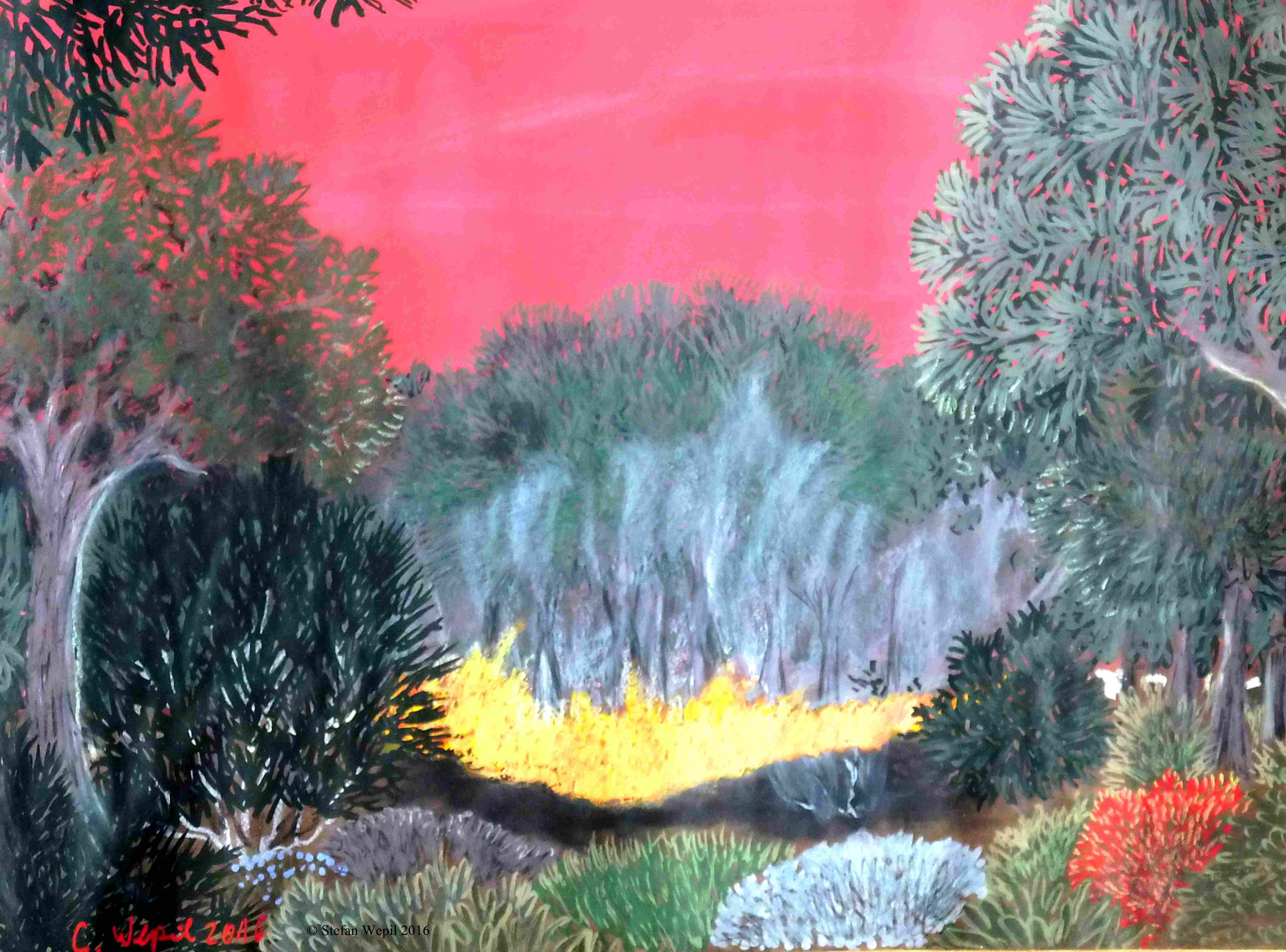Waldbrand auf Katron (C) Stefan Wepil