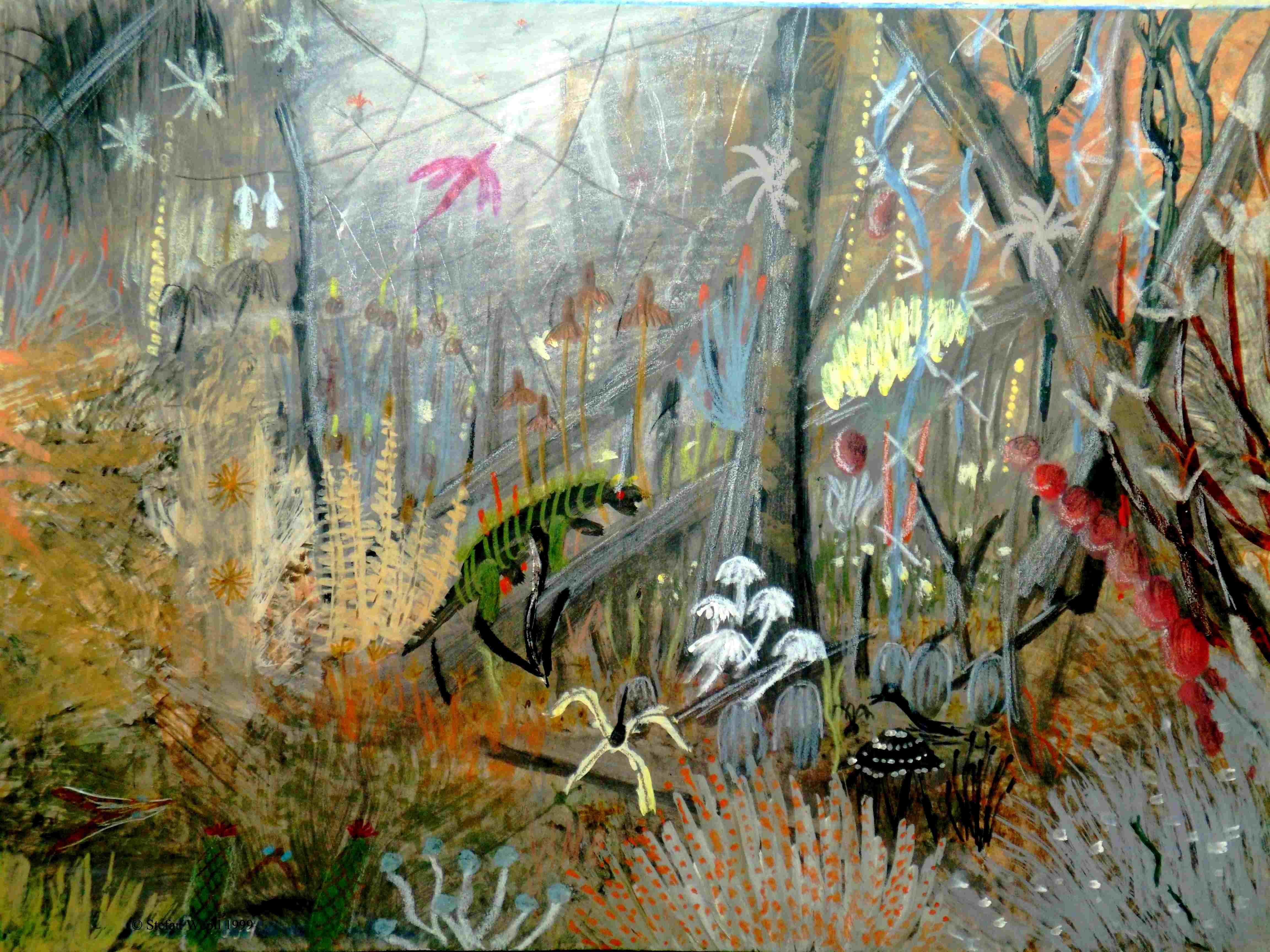 Ein typischer düsterer Urwald von Horrwworon in Saggittor. © Stefan Wepil
